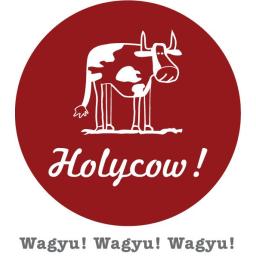 Promo Diskon HolyCow