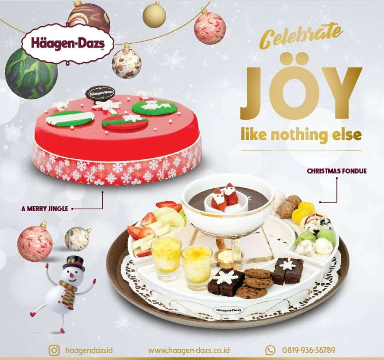 Diskon Haagen-dazs Christmas Ice Cream Cake Early Bird Offer Discount 25% off