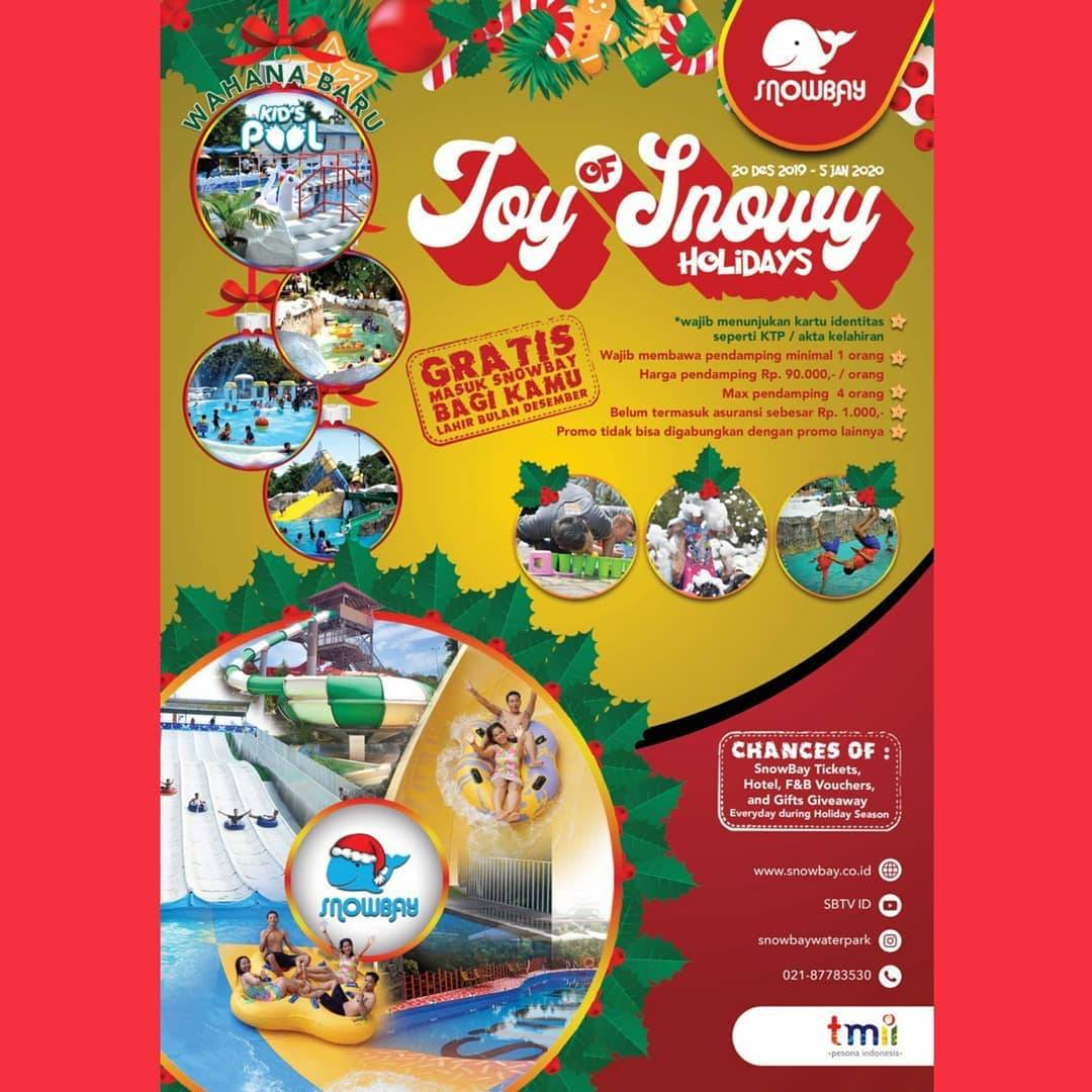 Snowbay Promo Joy Of Snowy Holiday